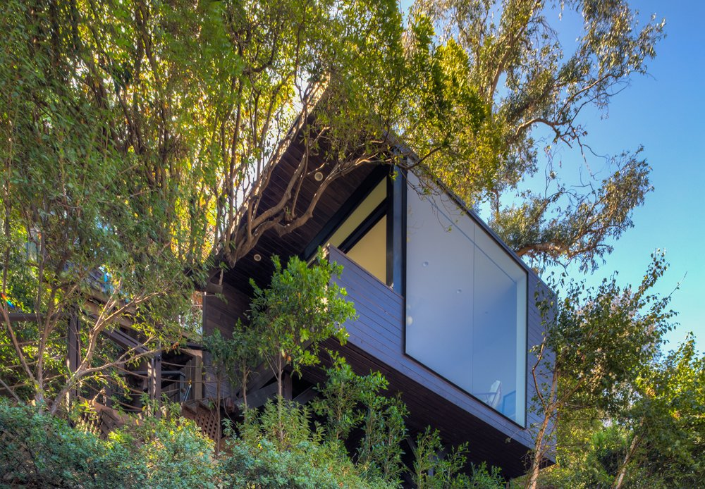 Black Box by ANX / Aaron Neubert Architects