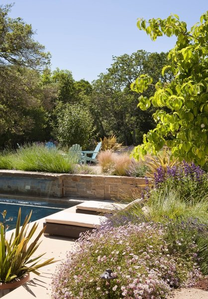 Retaining walls create a series of terraces, according to the grades set by the oaks.  Here a seating area rises above the pool.  Water spills from the stone wall into the pool.    By Arterra Landscape Architects. Photo by Michele Lee Willson Photo 3 of Homestead on Whiskey Hill modern home