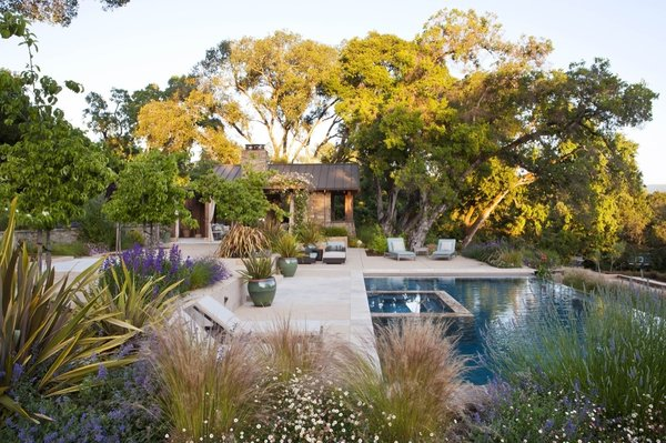 Looking south at sunset, the rustic pool house sits quietly in a stand of great oaks.    The building, pool and terraces are all sited to protect and celebrate the oaks and maximize views.  By Arterra Landscape Architects. Photo by Michele Lee Willson Photo 4 of Homestead on Whiskey Hill modern home