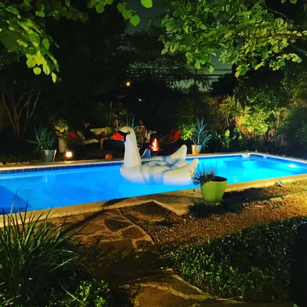 Modern home with outdoor, back yard, trees, gardens, grass, large patio, porch, deck, shrubs, pavers patio, porch, deck, lap pool, stone patio, porch, deck, wood fence, and landscape lighting. Dip @ Disco 3332 Night view Photo 11 of Disco 3332 in Dallas, TX