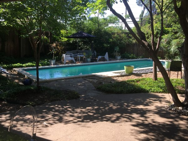 Modern home with outdoor, back yard, grass, gardens, lap pool, trees, wood patio, porch, deck, large patio, porch, deck, pavers patio, porch, deck, wood fence, and landscape lighting. Dip at Disco 3332 Day view Photo 18 of Disco 3332 in Dallas, TX