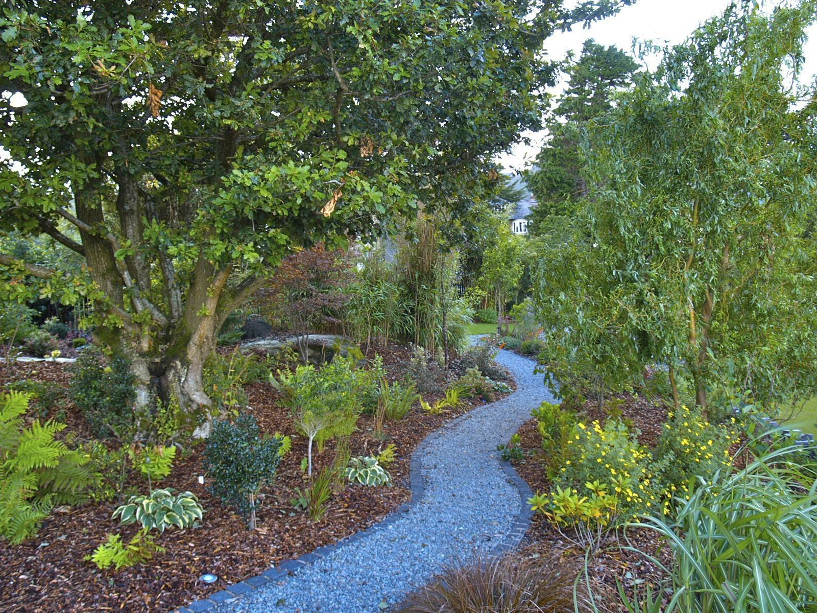 An existing Welsh oak was retained and pruned.  The rocky area was redefined with shade-loving perennials, Japanese maples and a winding, granite sett-edged granite path.  Clifftop garden North Wales by Scott Fairley
