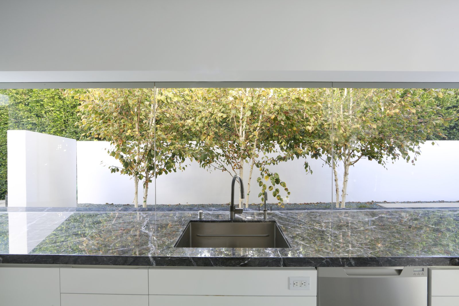 White birches play off the white walls in a narrow courtyard just beyond the kitchen. Tagged: Kitchen.  A New Stage