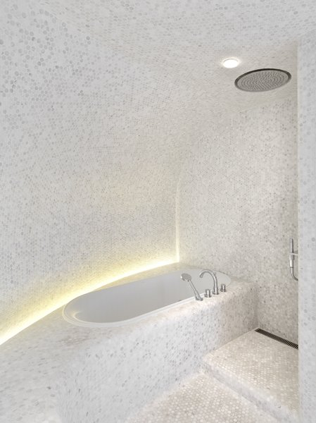 Master Bathroom - Tub Photo 9 of Apartment of Perfect Brightness modern home
