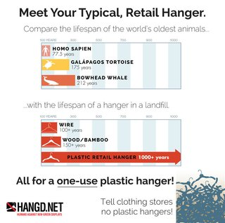 Hanging it Up | Going Green with Ditto Hangers - Photo 2 of 2 -
