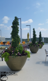 The Encore - Standing Out with Concrete Planters - Photo 2 of 2 -