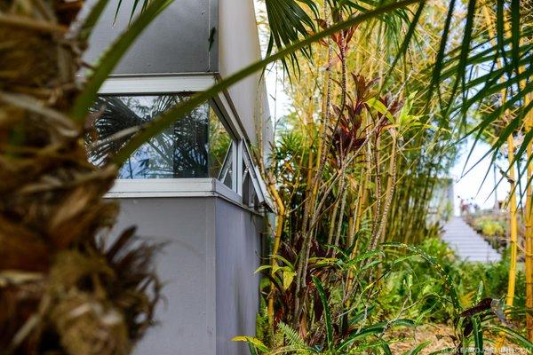 Photo 5 of The Robert Trickey House | A Hawaiian Retreat modern home