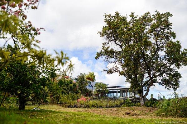 Photo 7 of The Robert Trickey House | A Hawaiian Retreat modern home