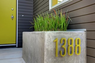 Curb Appeal - Photo 4 of 4 -