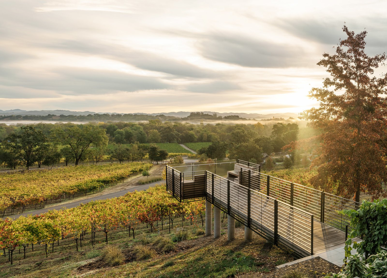 Spectacular belvedere overlook to experience the vineyards