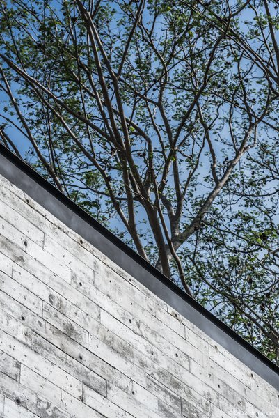 Pure concrete &  steel Photo 9 of Casa Kalyvas modern home