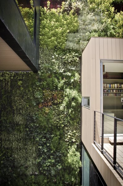 Modern home with outdoor and gardens. Vertical Garden at the Patio Photo 9 of Casa CorManca