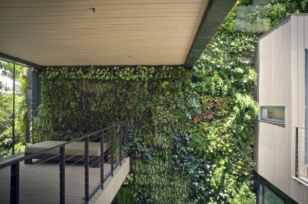 Modern home with outdoor, gardens, small patio, porch, deck, and garden. Main Terrace Photo 13 of Casa CorManca