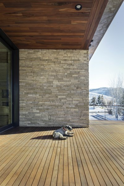 Spectacular Modern Mountain Home In Park City Utah: 45 Pets In Beautiful Modern Homes