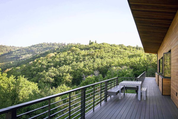 The viewing deck overlooks a canyon that's also home to beaver, moose, elk, deer, and bobcats.