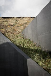A Compact Home That Literally Pops Up From the Grass - Photo 3 of 11 -