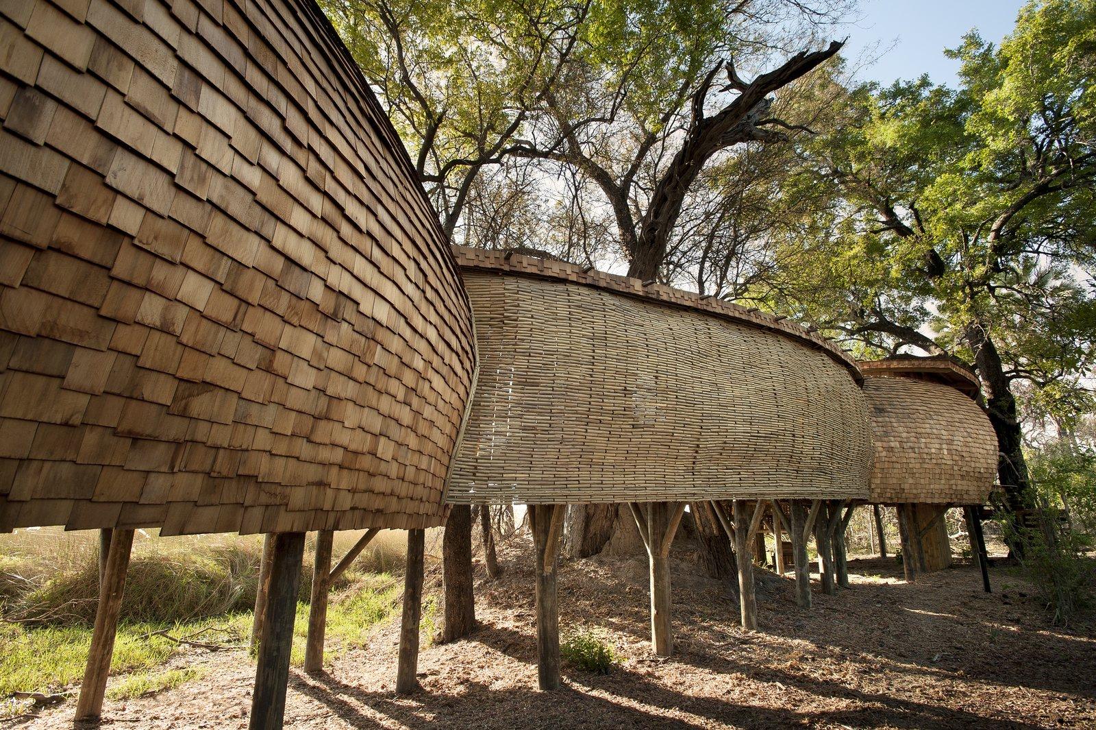 Photo 5 of 13 in Eco-Friendly Safari Lodge in Africa's Okavango Delta