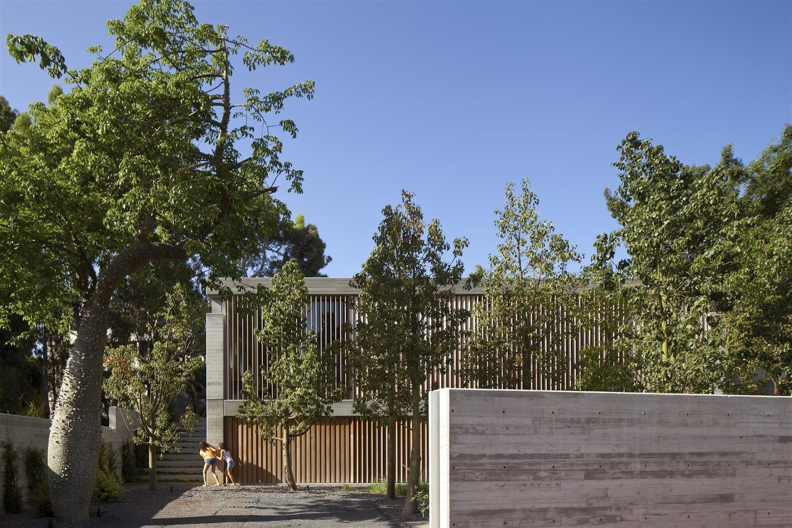 Tagged: Outdoor, Front Yard, and Trees.  Photo 6 of 13 in An Architect's Bright and Airy Family Home Thrives Within a Brutalist Concrete Structure