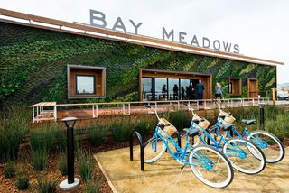 Measuring 86 feet in length, the vertical garden at Bay Meadow's Welcome Center in San Mateo, California, was designed by CMG Landscape Architecture. They selected plants for their ability to promote the ecological health of the surrounding area.