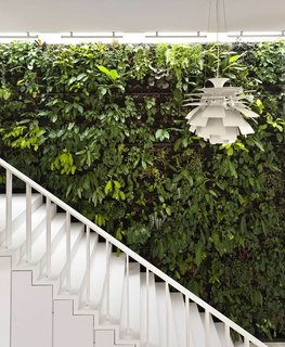 """This house, aptly named """"The Gardener"""" by Singapore practice Park+Associates Architects, has a green wall that's covered in plants next to a staircase that leads to the upper level of the house."""