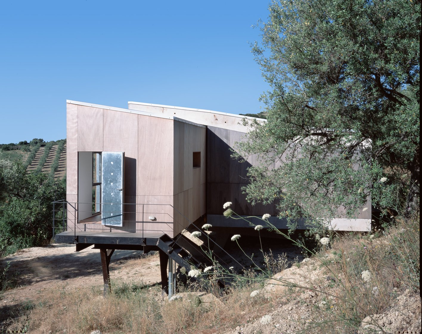 Tagged: Front Yard, Metal Fences, Wall, Hardscapes, and Trees.  Photo 6 of 12 in Stay in a Minimalist Villa in the Sicilian Countryside, Complete With Sea Views