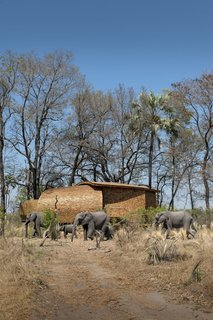 These 9 Structures Prove That Shingle Exteriors Can Be Surprisingly Modern - Photo 9 of 9 - Designed by Michaelis Boyd Associates in collaboration with Nicholas Plewman Architects, Sandibe Okavango Safari Lodge in Botswana's Okavango Delta has 12 nest-shaped guest suites with cedar-shingle exteriors inspired by the shell of pangolins and the nests of weaver finches.