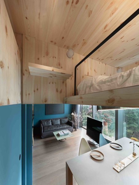 A Tiny Hong Kong Apartment With a Tree House-Inspired Loft - Photo 3 of 8 -