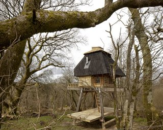 9 Small Studios Where Writers and Artists Can Get Creative - Photo 4 of 9 - Tokyo-born, UK-based architect Nozomi Nakabayashi created this hut in a Dorset forest for a writer client. The small tree house-style hut is built with Douglas fir and locally sourced western red cedar, with interiors filled with birch plywood, cork insulation, and a hessian fabric ceiling.