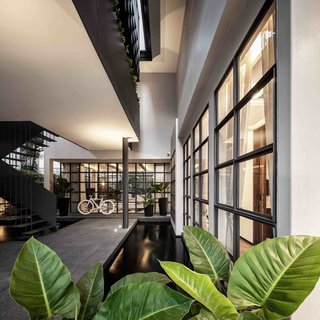 102 Potted Olive Plants Cover the Facade of This Bangkok Home - Photo 4 of 11 -