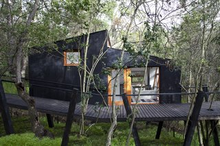 A Little Chilean Tree House That's One With the Canopy