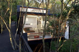 A Little Chilean Tree House That's One With the Canopy - Photo 6 of 9 -