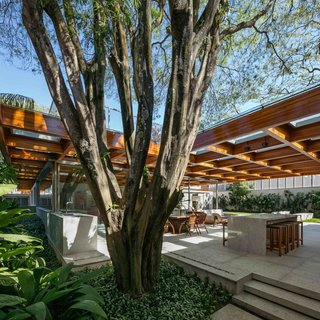 This Brilliant Brazilian Abode Was Designed Around an Imposing Tree - Photo 2 of 11 -