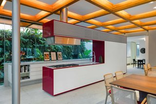 This Brilliant Brazilian Abode Was Designed Around an Imposing Tree - Photo 10 of 11 -