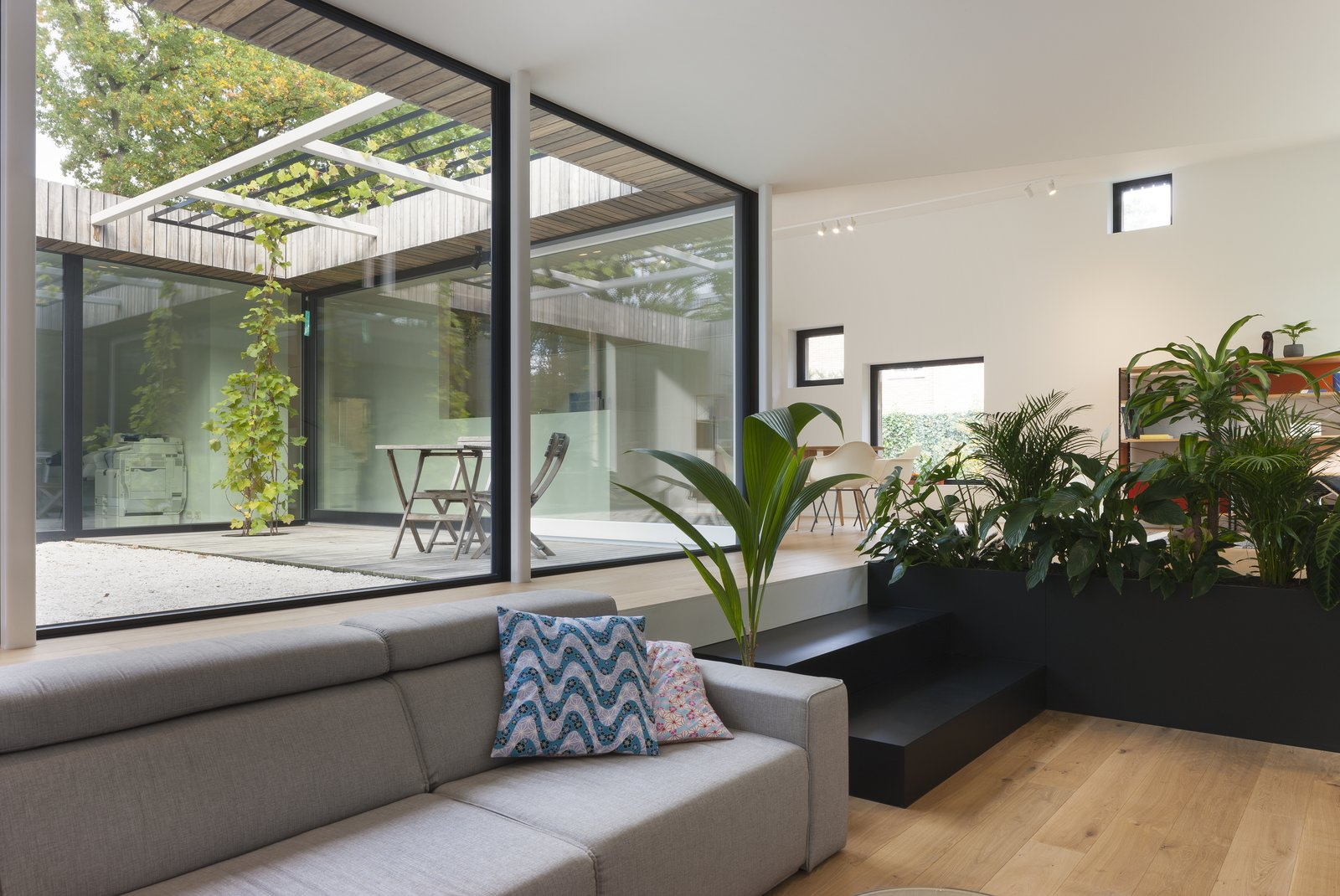 A black planter with ferns separate the living lounge from the dining area.