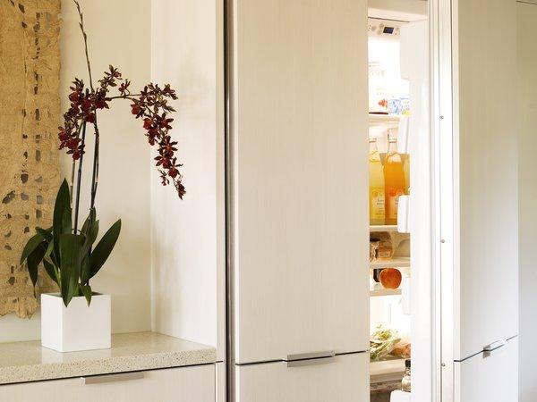 Modern home with kitchen, refrigerator, and engineered quartz counter. Hidden refrigerator Photo 5 of Sonoma Modern Kitchen