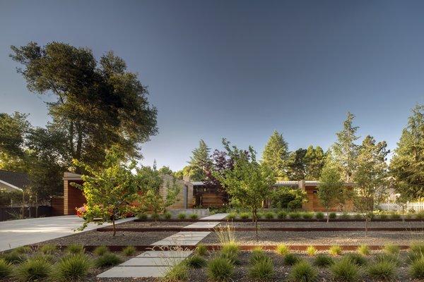 Photo 10 of Los Altos Modern Residence modern home
