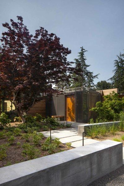 Photo 6 of Los Altos Modern Residence modern home