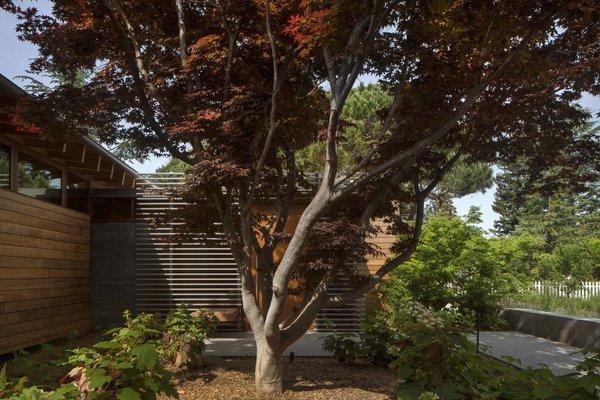 Photo 4 of Los Altos Modern Residence modern home