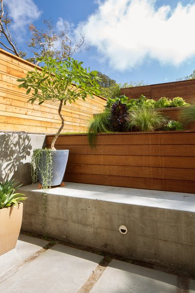 Backyard sunken patio Photo 16 of 27th Street - Noe Valley modern home