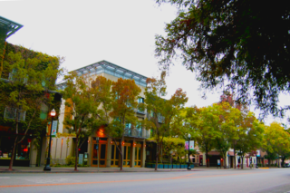 Artist Reinvents the Contemporary Art Experience - Photo 6 of 6 - The Healdsburg Plaza has a charm all it's own.