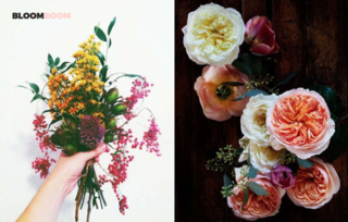 Left: Unknown, Right: Heirloom garden roses