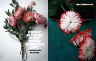 Bloom Boom - Photo 6 of 9 - Left: Unknown, Right: from kvtes.tumblr.com, Right: From a beautiful site Sinjabloeme Flower Arrangements
