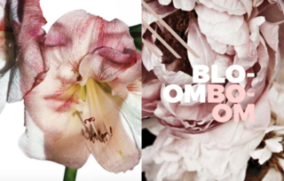 Bloom Boom - Photo 9 of 9 - Left: Photo by the wonderful iconic Photographer Melvin Sokolsky, Right: Peonie, Unknown