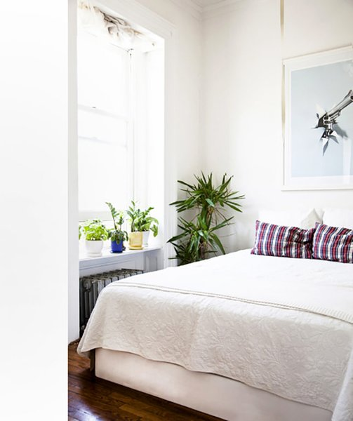 Incorporate your plants into your morning ritual; Source: Sidney Bensimon/The Sill