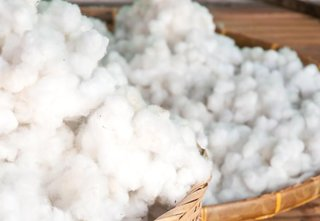 What is Egyptian Long-Staple Cotton - Photo 1 of 3 - Our Bedding allows you to experience Egyptian long-staple cotton in its purest and most natural form; Source: WiseGeek
