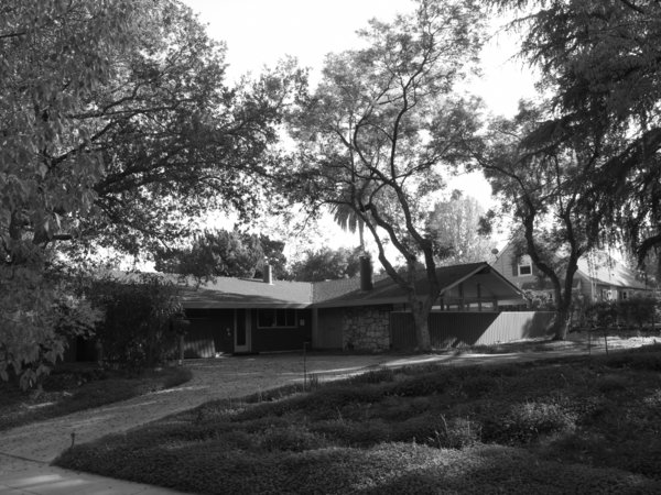 Modern home with outdoor, trees, front yard, shrubs, hardscapes, wood fence, woodland, garden, and slope. Before _ street view looking south east  Photo  of Alpine Street
