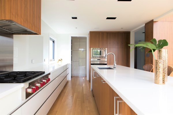 The design of the kitchen is unique in that is has no upper cabinets, and features drawers all throughout the bottom cabinetry – a feature not typically found in residential kitchen designs. Photo 3 of Ravine House modern home