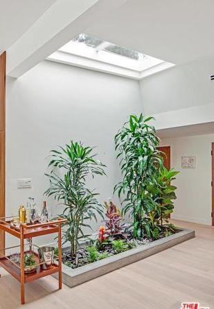 Terrarium with skylight  Photo 3 of Studio City MCM Sleeper modern home