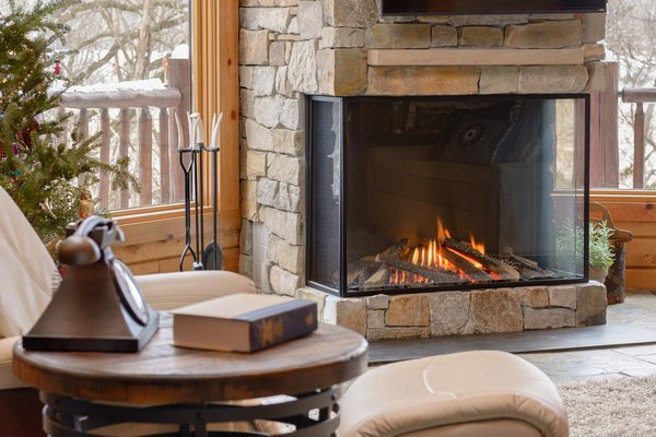 Modern home with living room and gas burning fireplace. Trisore 100H by Element4; distributed in North America by European Home - pictured with safety screen. Photo 2 of Northwoods Log Cabin