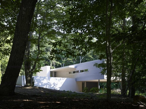 Photo 10 of Green Woods House modern home